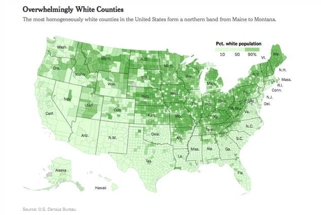 white-voters-1